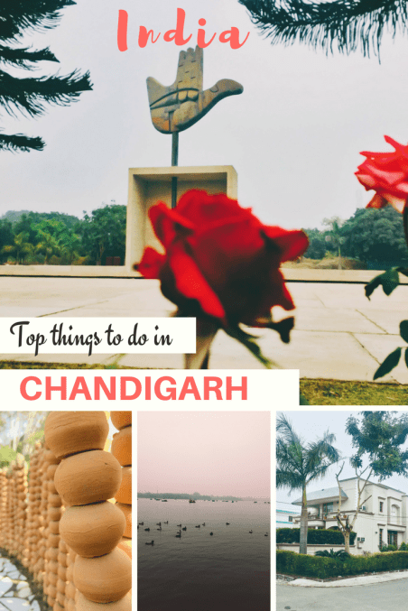 Top 8 things to do in Chandigarh, India | Best Places to visit in Chandigarh, India | Things to do in Chandigarh | Best places to stay in Chandigarh || Best places to eat in Chandigarh Chandigarh Solo Travel | Solo female traveler | Chandigarh Must visit | Chandigarh sightseeing | Chandigarh attractions | ndia | Chandigarh | Asia | Traveling | travel | #thewanderingcore #travel #chandigarh #punjab #haryana #india #asia