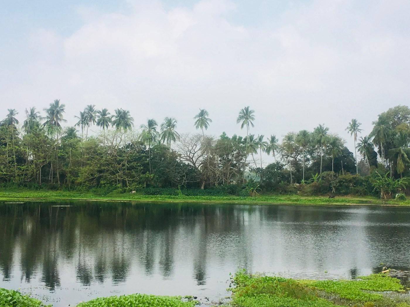 Countryside of Odisha, India