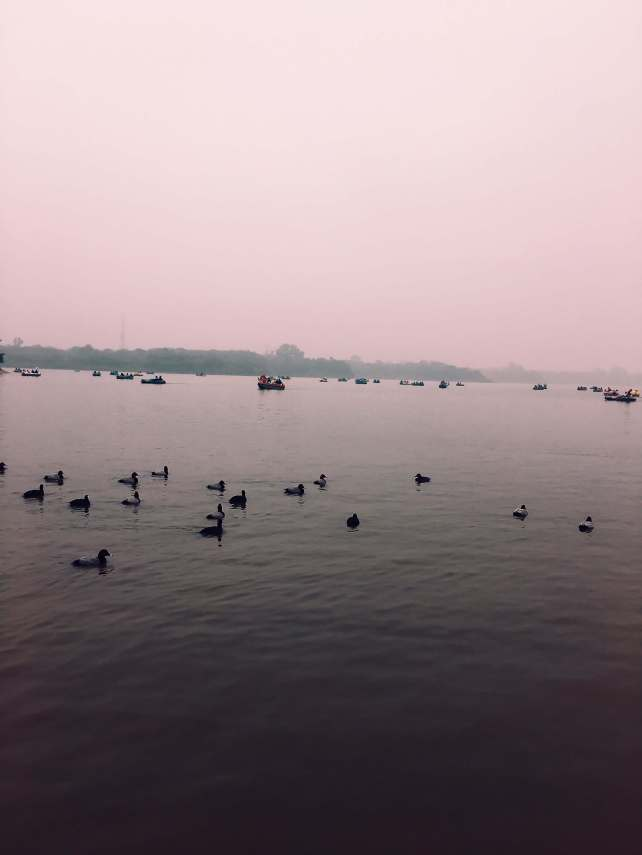 things to do in Chandigarh | Sukhna Lake Chandigarh India
