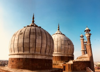 The tombs of the Jama Masjid, Delhi
