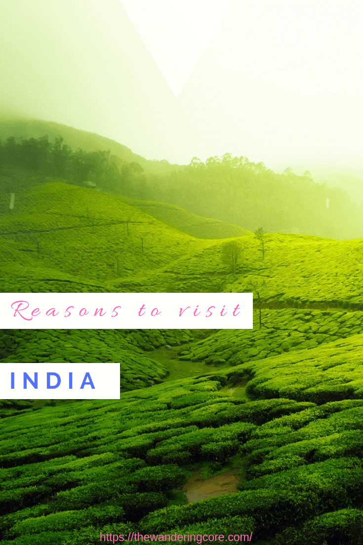 India Travel | Stories to Inspire you to take a trip to India | Reasons to visit India | India trip | visit India | Why visit India | Reasons to travel to India | #thewanderingcore #india #asia