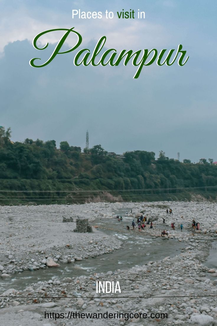 Palampur Tea Gardens | Places to visit in Palamapur | Places to stay in Palampur | Where to stay in Palampur
