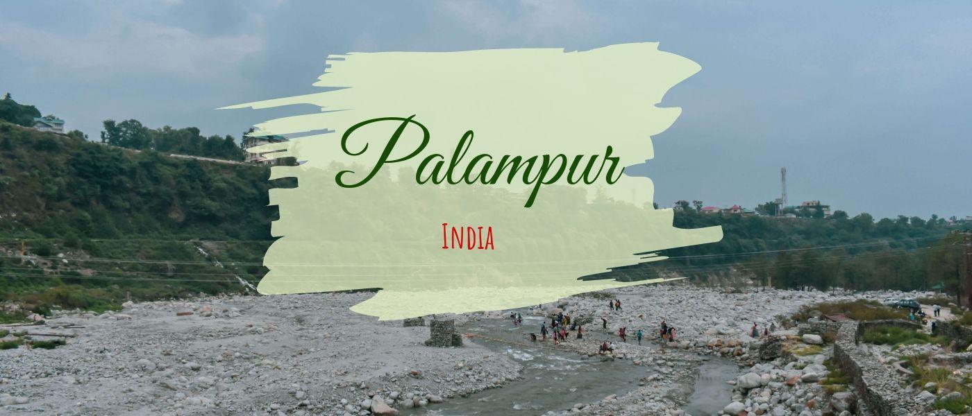 Rejuvenate around Palampur Tea Gardens