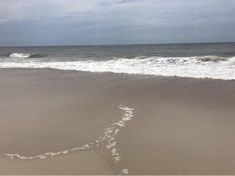 5 places to visit in North Carolina. Different Frame of Mind Blog guest post on The Wandering Darlings