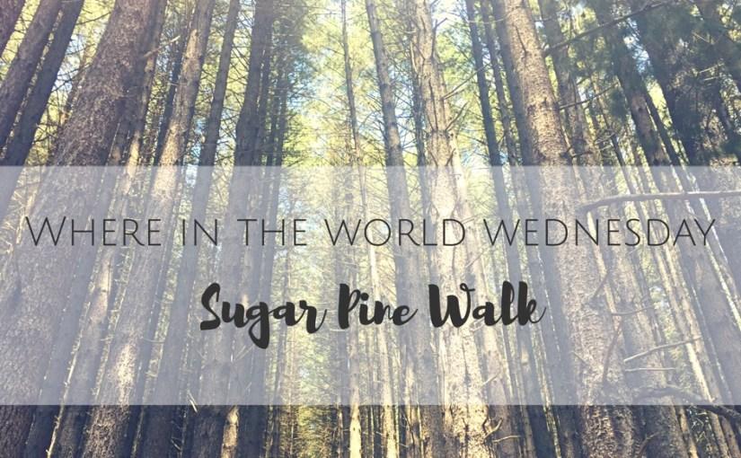 Where in the World Wednesday- Sugar Pine Walk, Australia