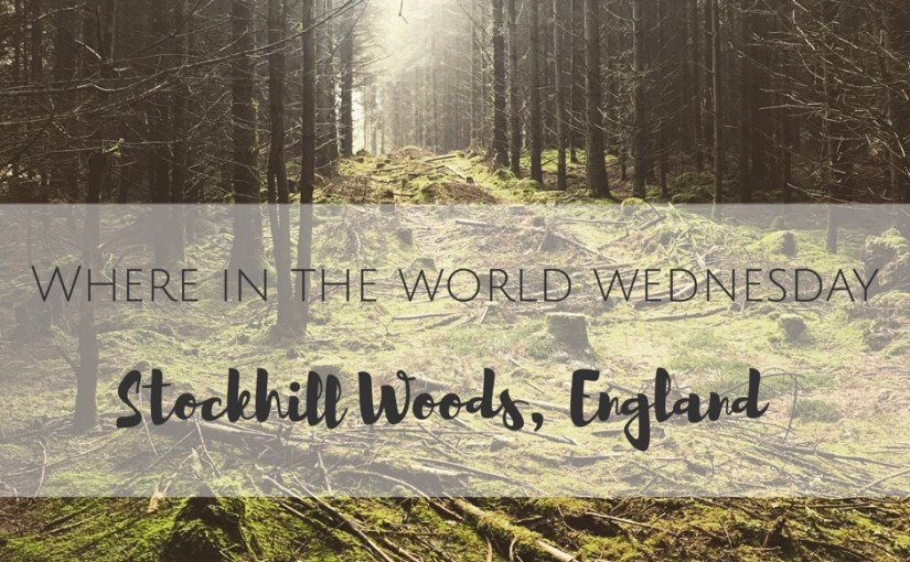 Where in the World Wednesday- Stockhill Woods