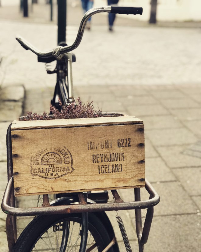 pretty bike in reykjavik - 38 photos to visit Iceland from The Wandering Darlings