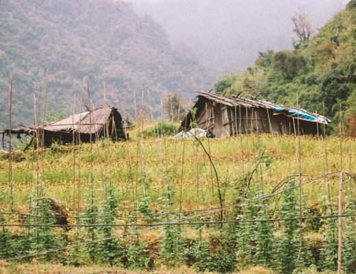 Chumrong | Bamboo | Himalaya | Nepal | ABC | Hiking | Annapurna
