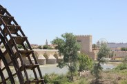 The reconstructed Moorish waterwheel and in the background the old watch tower now housing an exhibition of Al-Andalus