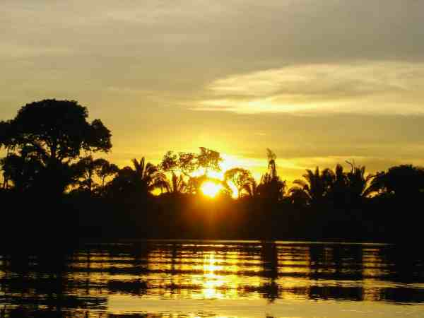 Golden Sunset in Amazon Rainforest | Ecuador Itinerary