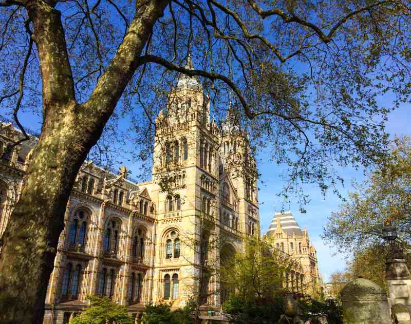 3 Day London Itinerary, Natural History Museum