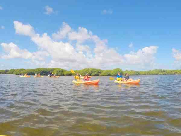 Things to do in Antigua and Barbuda Kayaking