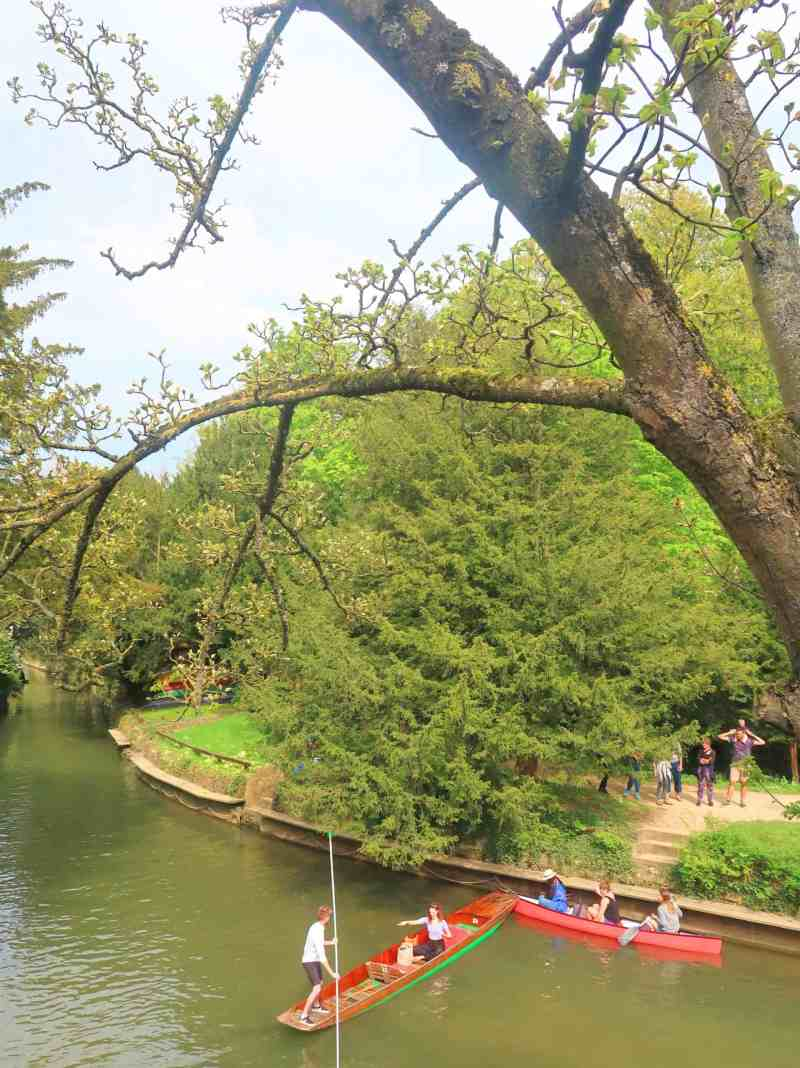 oxford things to do punting