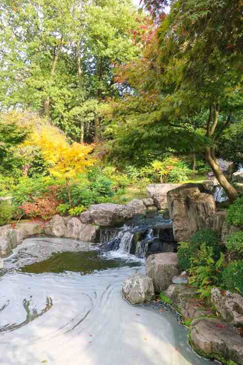 things to do in Kensington, Kyoto Gardens