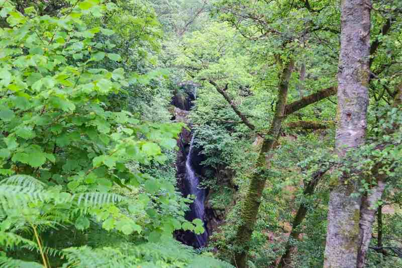 3 Days in the Lake District Rabbies Tours