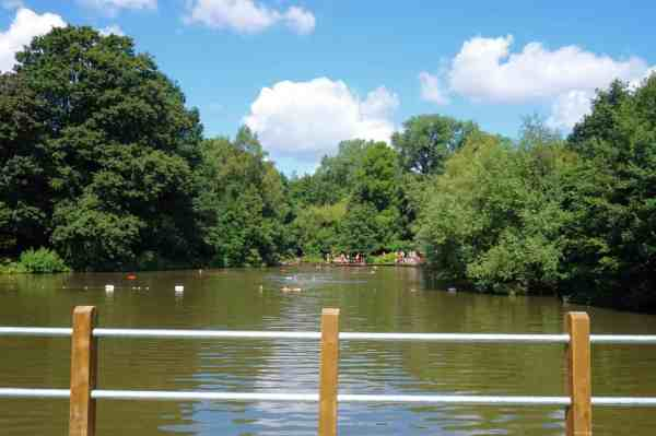 Hampstead Heath Bathing Ponds