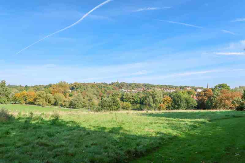 Things to do in Hampstead London Hamptead Heath