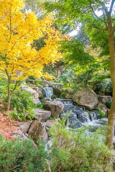 Kyoto Gardens Holland Park in Autumn