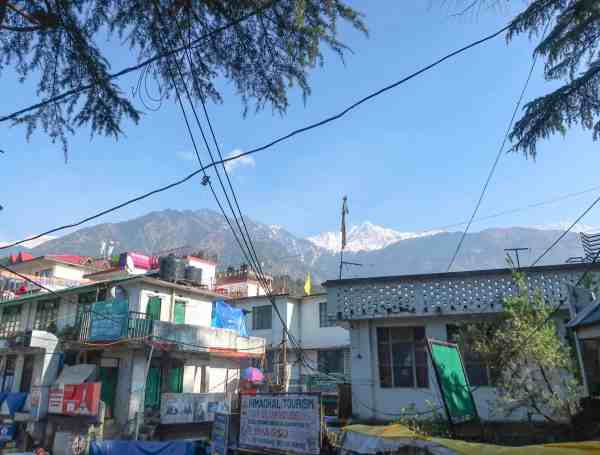 Dharamshala McLeod Ganj Travel Guide Mountains