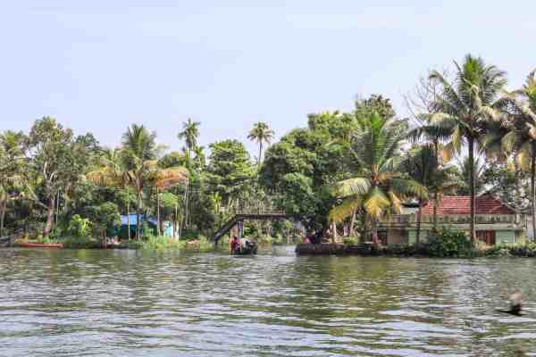 Kerala Backwaters from Alleppey Canoe