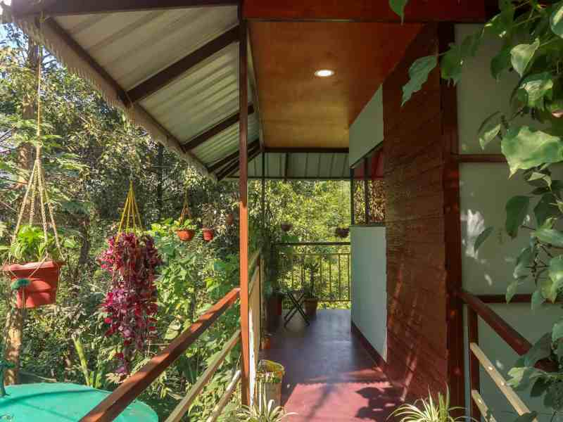 The Wayside Cottage Munnar Room | 2 week south india itinerary