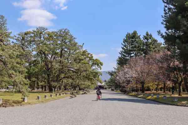 Kyoto day trip itinerary Kyoto Park