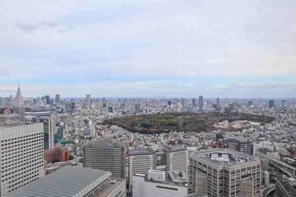 free view of Tokyo