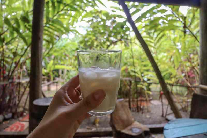 dominica day tours, coconut rum at bush bar in dominica