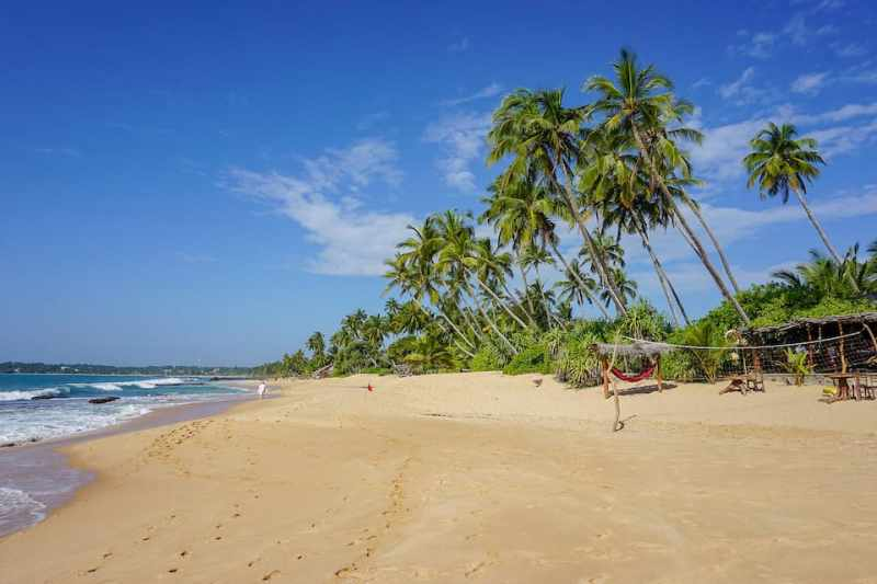 white sand beach with blue sky and palm trees | best places to visit in Sri Lanka