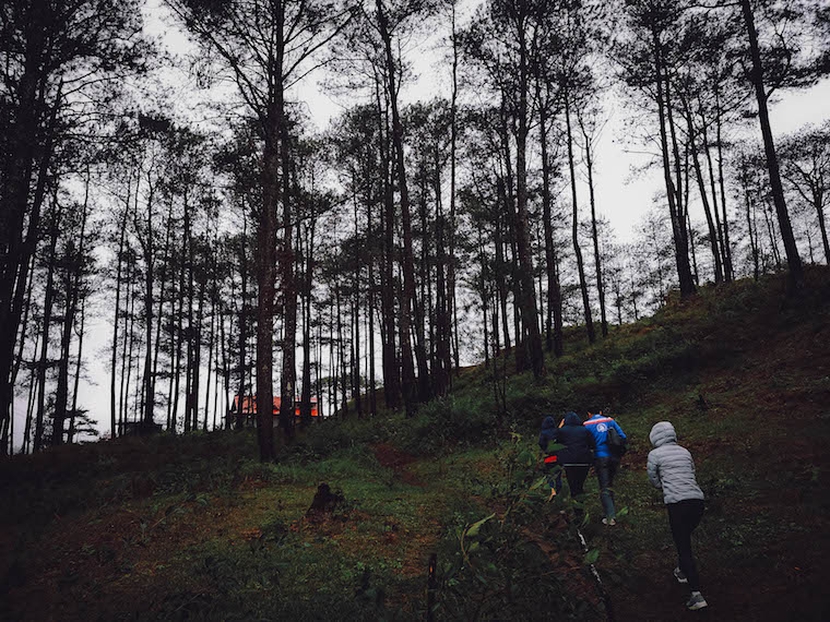 Sagada trees hike | best places to travel in Asia December and January