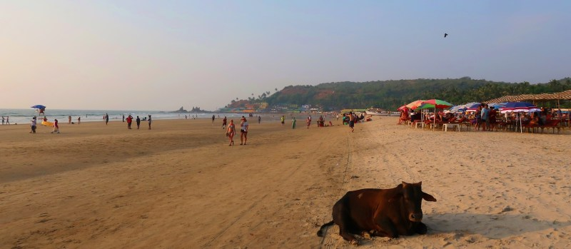 beaches in Goa for foreigners