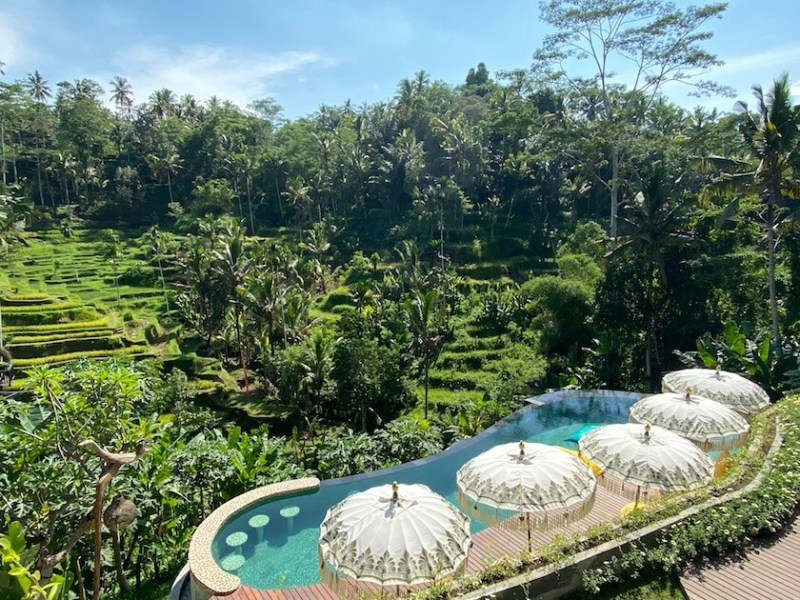 Tis Cafe Ubud Pool and Rice Terraces
