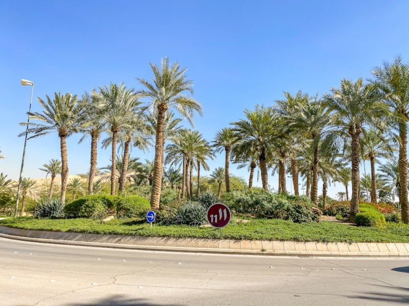 things to do in Riyadh Diplomatic Quarter, Roundabout