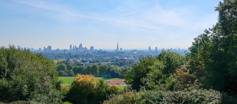 Things to do in Hampstead