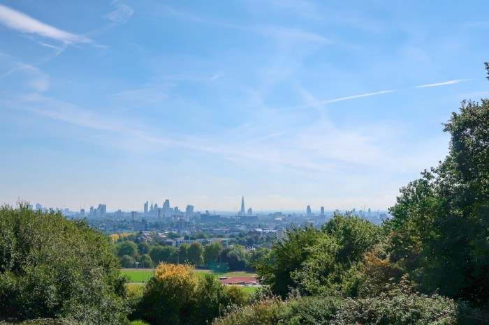 Things to do in Hampstead, Parliament Hill Hampstead Heath View