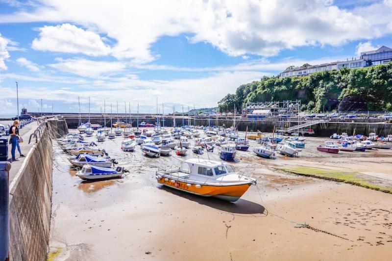 things to do in Saundersfoot, Saundersfoot Harbour