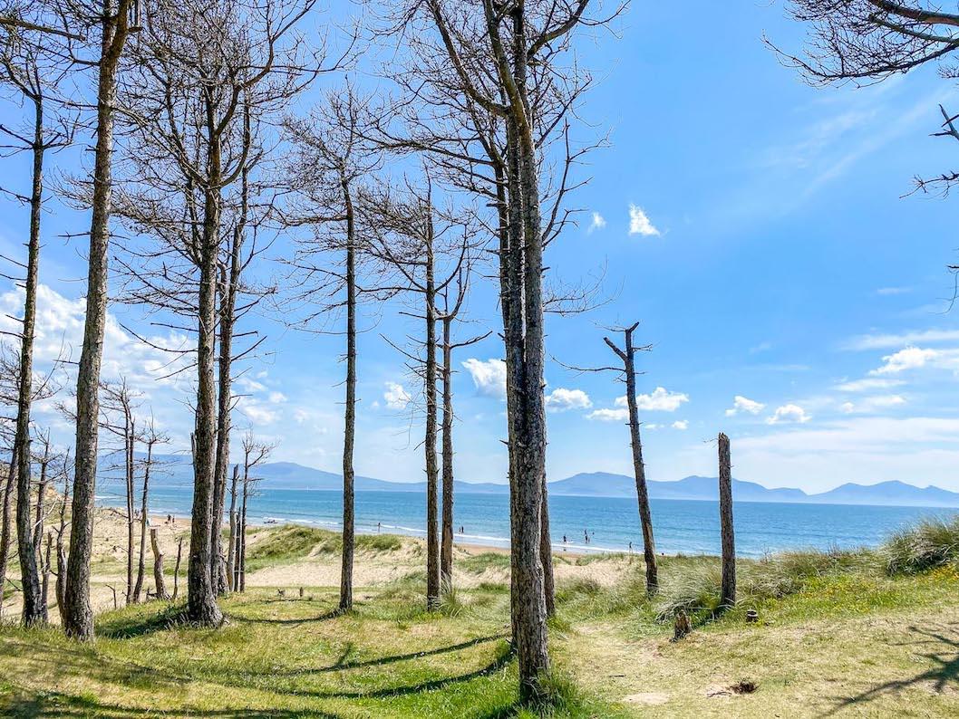 Newborough Beach, Wales Road Trip