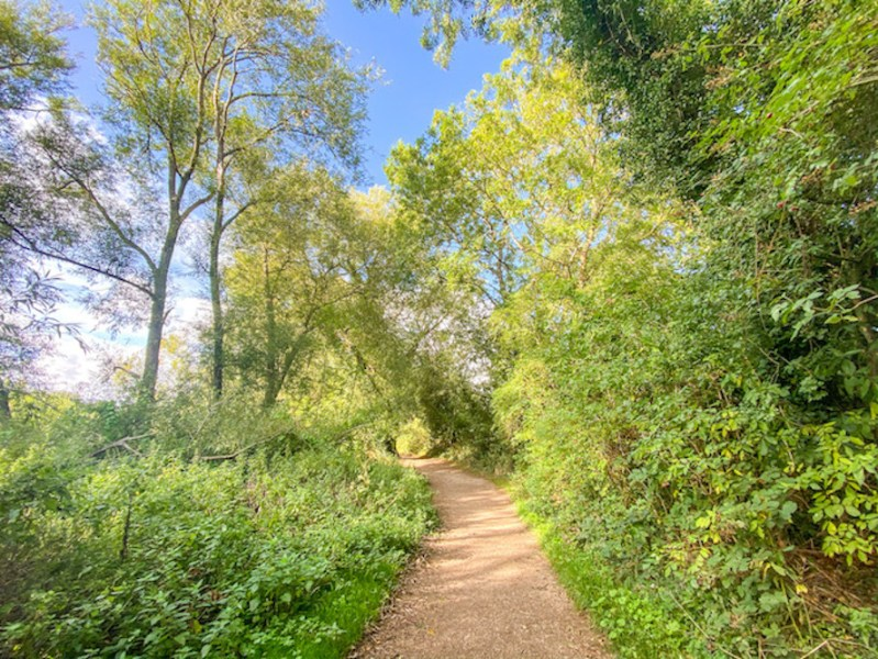 Daventry Country Park Footpath