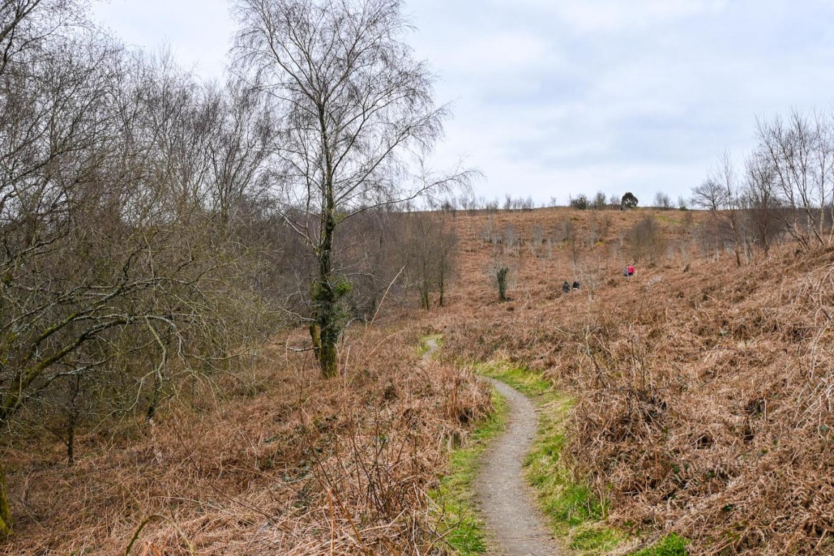 Caerphilly Mountain footpath