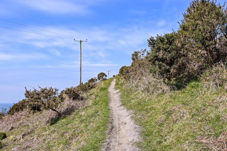 Footpath,Garth Mountain Walk