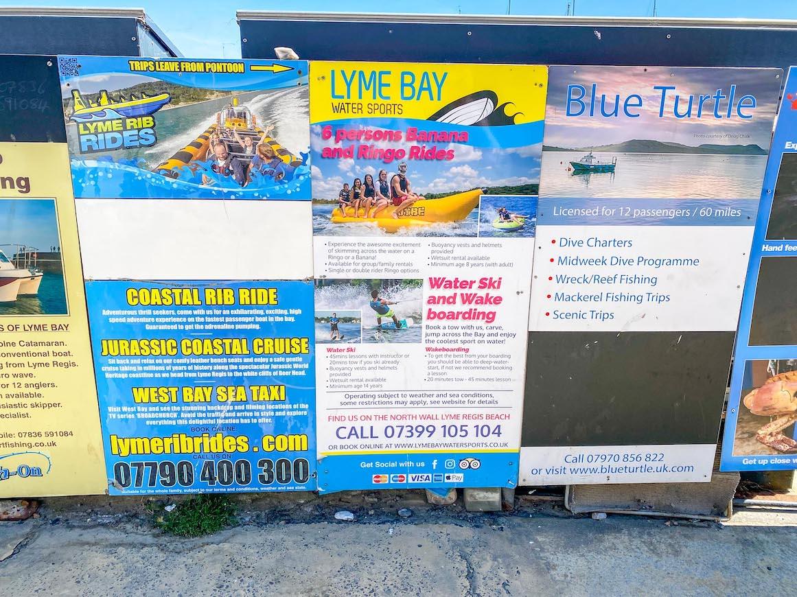 Things to do in Lyme Regis, Lyme Regis Activities