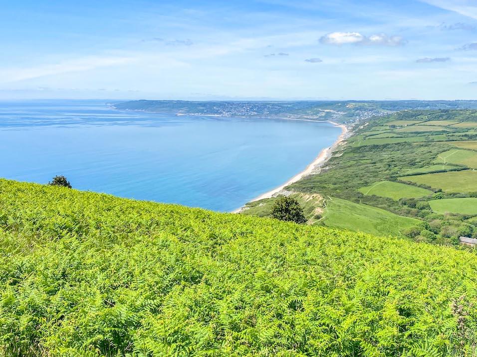 Things to do near Lyme Regis, Golden Cap Walk