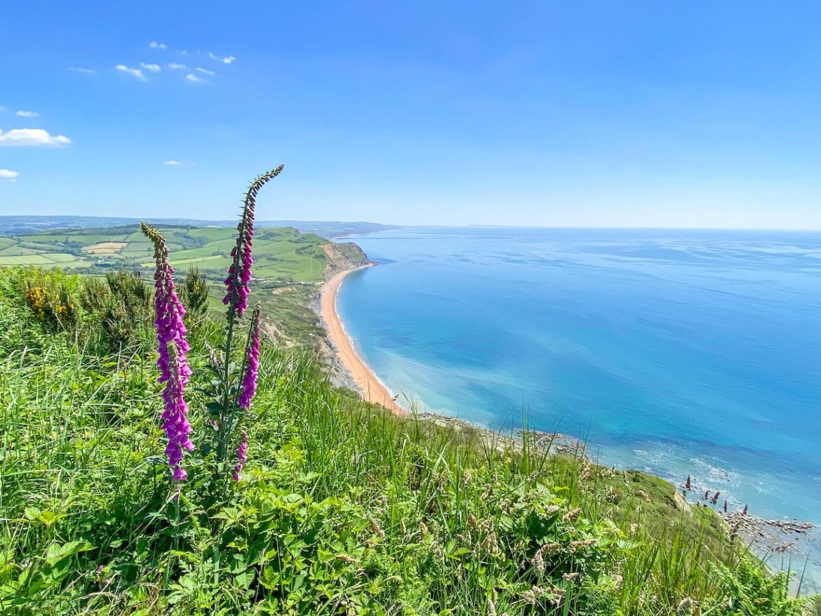 Golden Cap Viewpoint over Seatown and West Bay