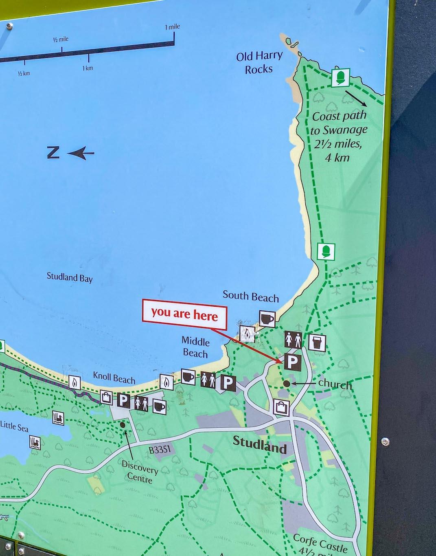 Old Harry Rocks Walk, National Trust Map