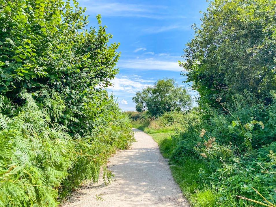 Old Harry Rocks Walk, Footpath from Studland
