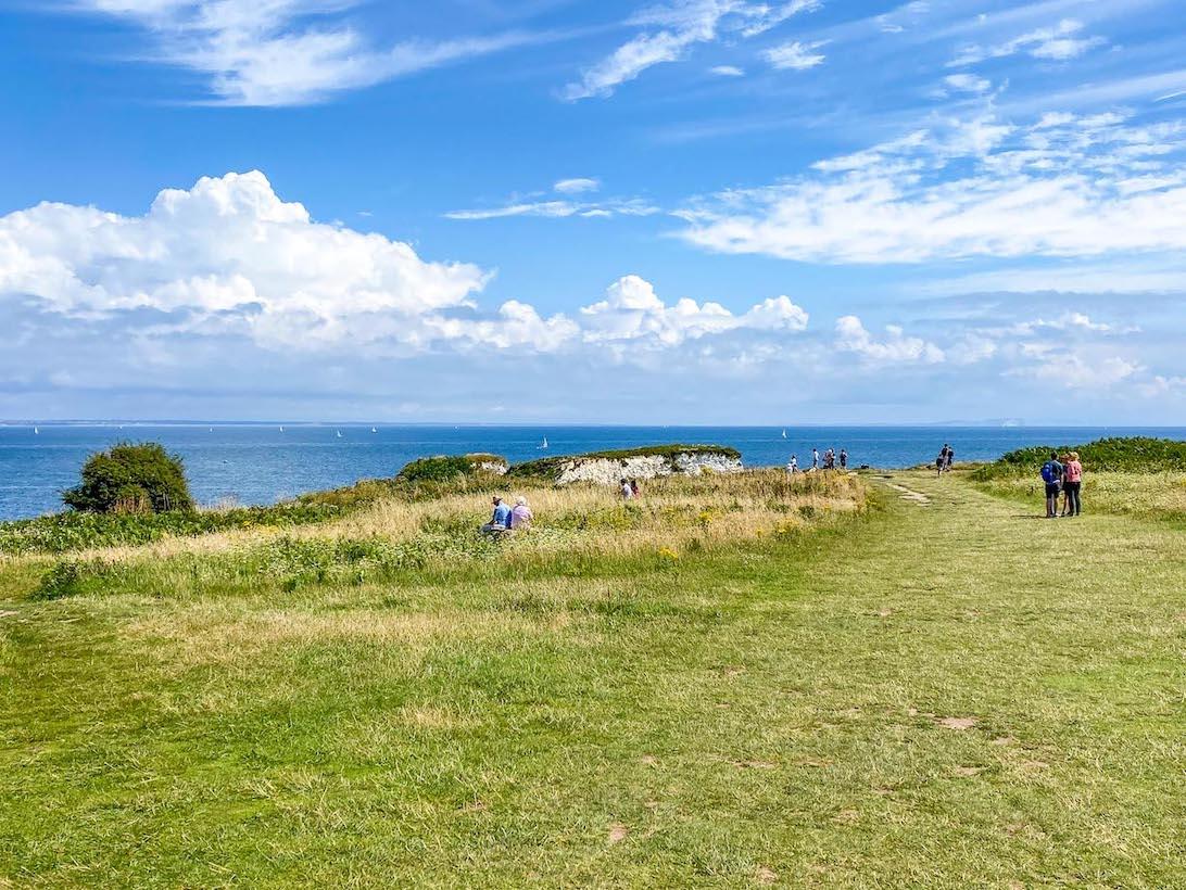Old Harry Rocks Walk, approaching footpath view