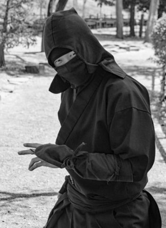 blog-ninja