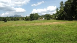 Pasture, temple, mountains