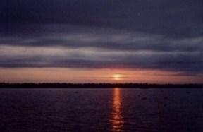 Backwaters Black and Purple Sunset