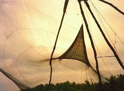 Chinese Net at Sunset